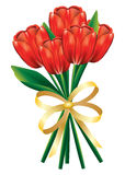 Tulip bouquet with bow Royalty Free Stock Images