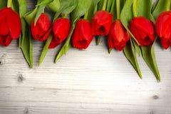 Tulip bouquet Stock Photography