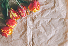 Tulip bouquet on craft paper with free space Stock Photo