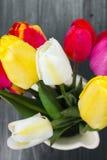 Tulip bouquet Stock Photos