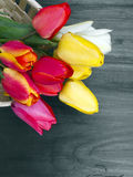 Tulip bouquet. On dark wooden background Royalty Free Stock Image