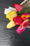 Tulip bouquet on dark wooden background Royalty Free Stock Image