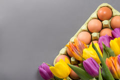 Tulip bouquet with easter eggs Royalty Free Stock Photography