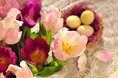 Tulip Bouquet at the eastern time Stock Photo