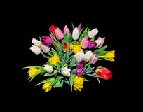 Tulip bouquet isolated on black. Tulip bouquet with colorful tulips isolated on black seen from above royalty free stock photography