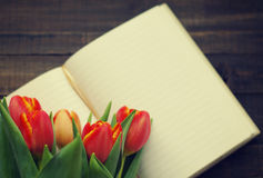 Tulip bouquet and  open blank notebook Stock Photo
