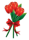 Tulip bouquet with red bow Stock Photo