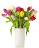 Tulip bouquet in a vase  Stock Photography
