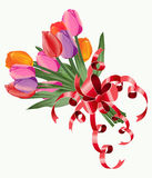 Tulip bouquet. Vector. Colored tulips, bouquet, illustration Royalty Free Illustration