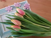 Tulip Bouquet And Vintage Frame images stock