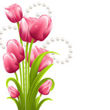 Tulip bouquet on the white background with pearls Royalty Free Stock Photo