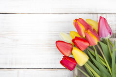 Tulip bouquet Royalty Free Stock Photos