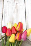 Tulip bouquet on white wooden background, Stock Photography