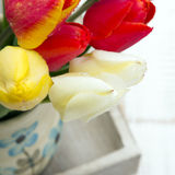 Tulip bouquet on white wooden background, Stock Images