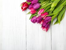 Tulip bouquet on white wooden background, Royalty Free Stock Images