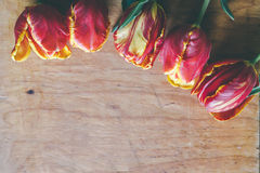 Tulip bouquet on wood board with free space Stock Photo