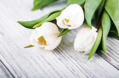 Tulip bouquet. On a wooden background Royalty Free Stock Photography