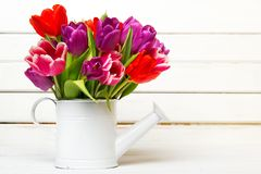 Tulip bouquet on wooden background, Stock Image