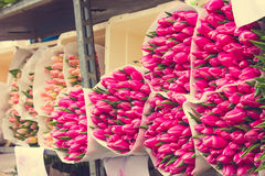 Tulip Bouquets on the Market Stock Photo