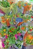 Tulip Bouquets for Sale Stock Photos