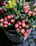 Tulip bouquets on sell at the market Stock Photo