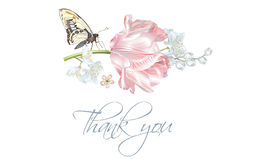 Tulip butterfly thank you card Stock Images