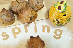Tulip cakes words spring Stock Image