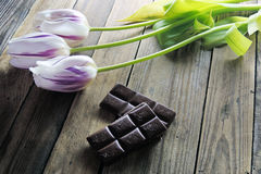 Tulip and chocolate on wooden background. Delicious Mothers day  chocolate cupcakes  with spring flowers Stock Photos