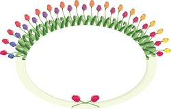 Tulip circle plaque Stock Image