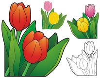 Tulip corner ornament Stock Photography