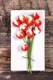 Tulip creative. With cherry tomato and cheese cream Royalty Free Stock Photography