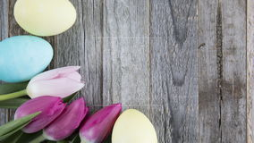 Tulip and Easter Egg Time Lapse. Easter egg and tulip frame time lapse on wooden surface with copy space stock video footage