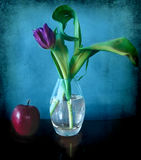 Tulip em um vaso e em uma maçã de vidro Fotografia de Stock