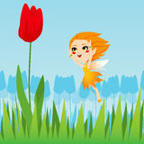 Tulip Fairy Royalty Free Stock Photos