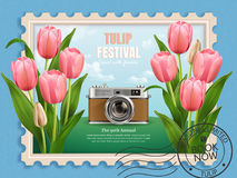 Tulip festival ads Royalty Free Stock Image
