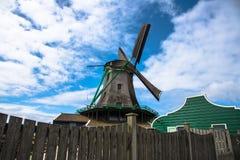 Tulip field adnd old mills in netherland Stock Photos