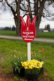 Tulip Field Sign Stock Photo