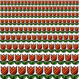 Tulip Field Texture Pattern. Red and Green Tulip Field Texture Pattern Stock Images
