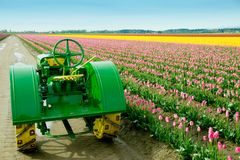 Tulip Field Tractor Royalty Free Stock Photos