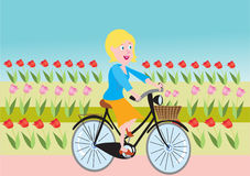 Tulip field and a woman on a bike. A cartoon illustration of a Tulip field and a blond woman in clogs riding on a bike Royalty Free Stock Photo