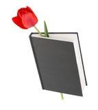 Tulip flower book Stock Photos