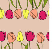 Tulip flower border background vector Stock Image