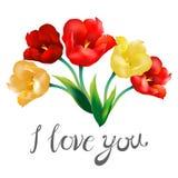 Tulip flower design background I love you Royalty Free Stock Photo