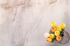 Tulip flower in the glass jar with crack white cement background spring concept Royalty Free Stock Photo