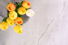 Tulip flower in the glass jar with crack white cement background spring concept Royalty Free Stock Photos
