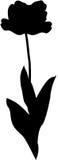Tulip Flower silhouette royalty free illustration