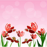 Tulip flower vector background Royalty Free Stock Images