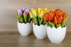 The tulip flowers against wooden background Stock Photo