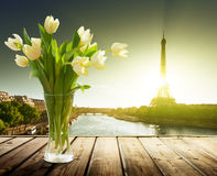 Tulip Flowers And Eiffel Tower Stock Images