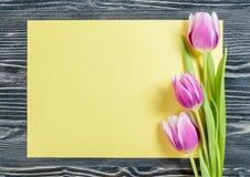 Tulip Flowers avec la feuille de papier Image libre de droits